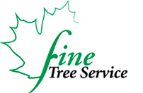 Fine Tree Service- Tree Care: Pruning, Removing, Stump Grinding- Plant Health Care: Spraying, Mountain Pine Beetle Spraying, Insect and Disease Managment- Lawn Care: Fertilization, Weed Control